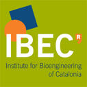 IBEC Master Scholarships for International Students in Spain