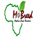 MoBreed Intra-Africa Mobility MSc and Doctoral Scholarship for Plant Breeders in Africa, 2019