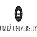 Postdoctoral Research Position in Theology at Umeå University, Sweden
