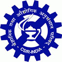 DSI-CSIR Bursary: Inter-Bursary Support Program 2020