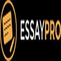 Essay Writing Contest by EssayPro