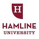 Hamline International Excellence Scholarships in USA