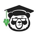 Ivy Panda Essay Writing Scholarship 2020