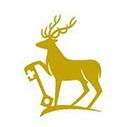 Surrey Prestige funding for International Students in UK, 2019