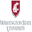 WSU International Departmental Program Awards in USA